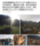 Screenshot_20191108-101142.png