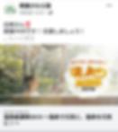 Screenshot_20191108-120936.png