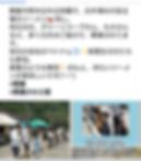 Screenshot_20191108-120721.png