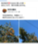 Screenshot_20191108-101905.png