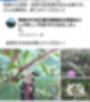Screenshot_20191108-103129.png