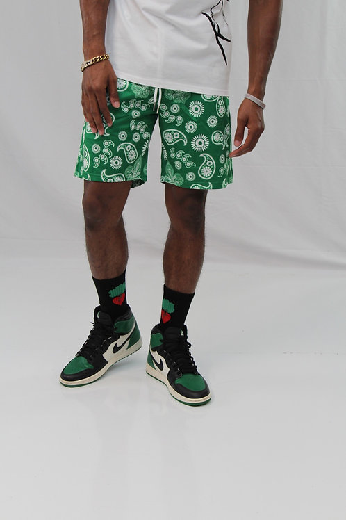 Season 3 Rooted Socks