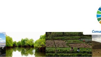 Cómo involucrarse en nuestra comunidad de práctica sobre Evaluación Ecosistémica de los ODS (EE2030)