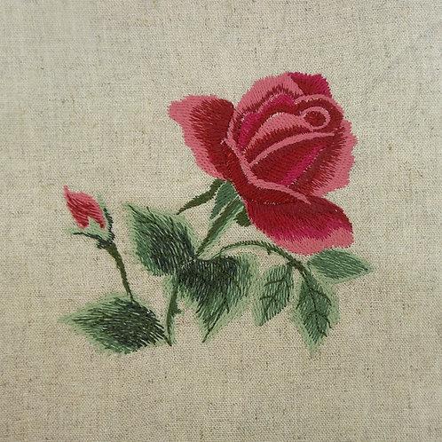 Rosa Aquarela