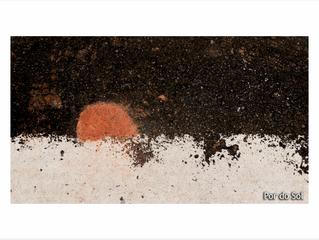 As Fotos de Sarjeta de Miriam Homem de Mello