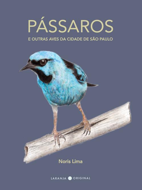 Pássaros e outras aves da cidade de São Paulo