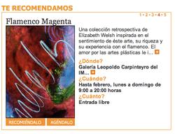 El Norte Flamenco Magenta.png