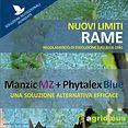 Comunicazione RAME_MANZIC+PHYTALEX.JPG