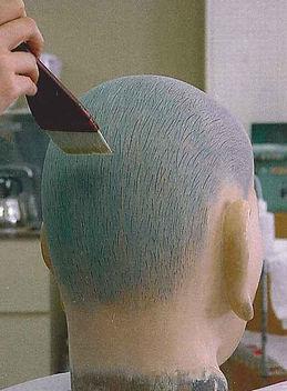 頭髪の再現.jpg