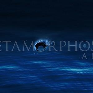 S36 Metamorphoses