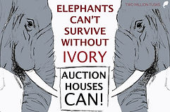 Re poster for court ELEPHANTS CAN'T SURV