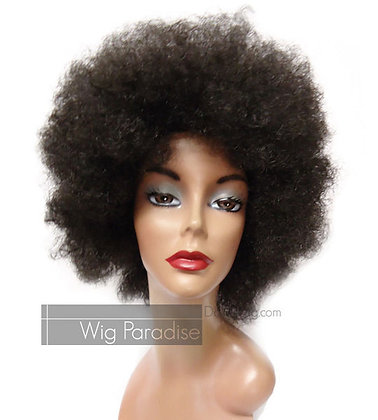 Miz Collection Synthetic Afro Wig