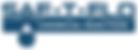 saf-t-flo logo.png