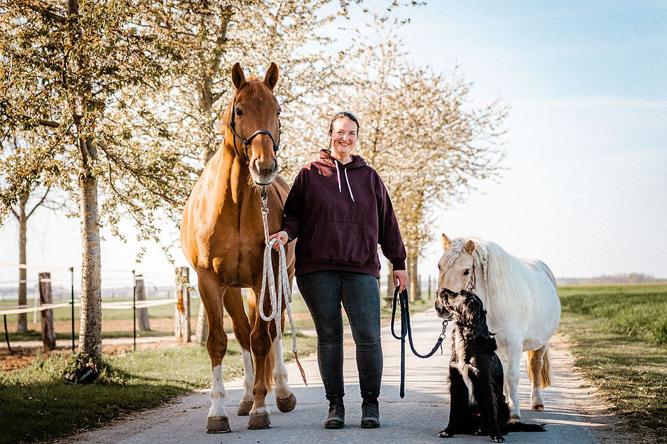 Jasmin Baumgart Coaching für Pferd und Reiter
