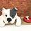 Thumbnail: 'Betty the Bitsa' Dog House by Sarah Robertson