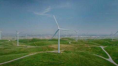 Wind Mill Graded_1.7.3_s.jpg