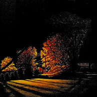 Lawn Trees.jpg