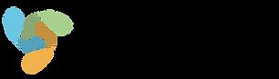 Karim Chabrak - Coinsence logo.png