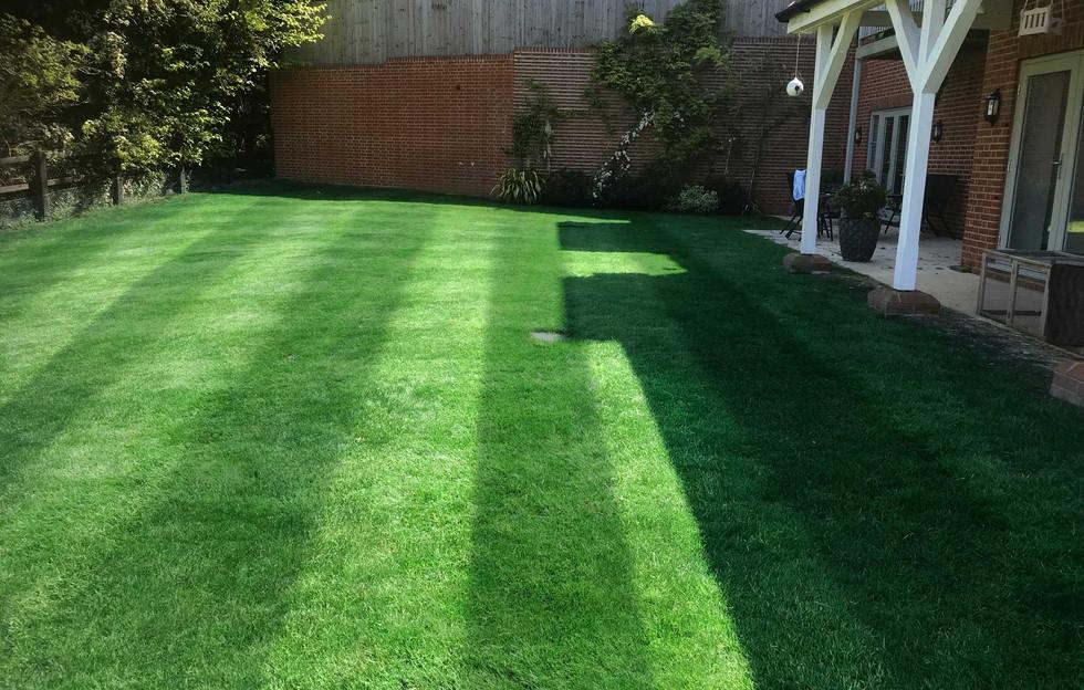 Lawn22