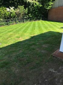 Lawn repair