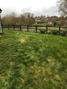 Excess Lawn thatch