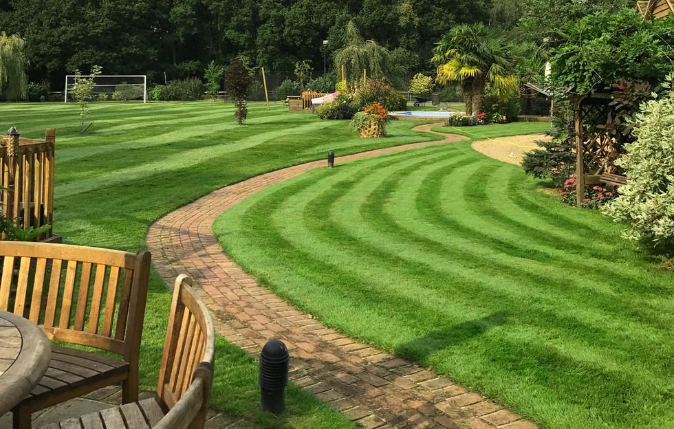 Lawn23
