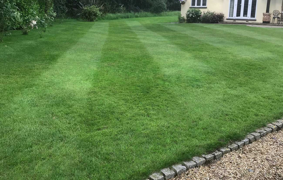 Lawn13