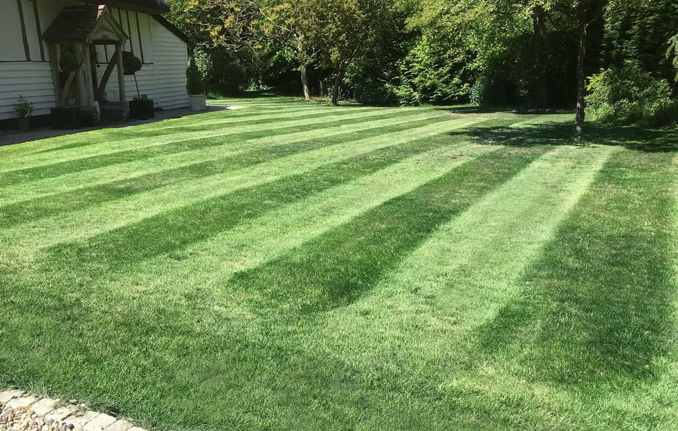 Lawn16
