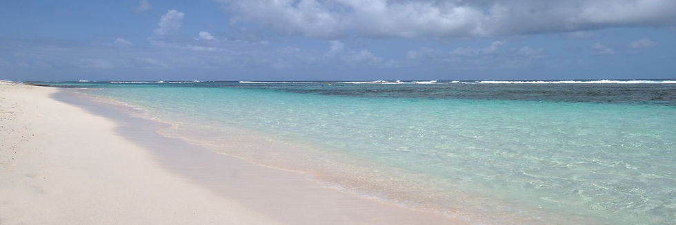 Saline Beach on Guadeloupe close to La pointe des chateaux