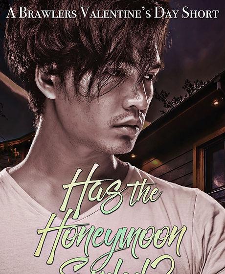 Has-the-Honeymoon-Ended-Kindle.jpg