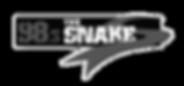 snake-radio.png