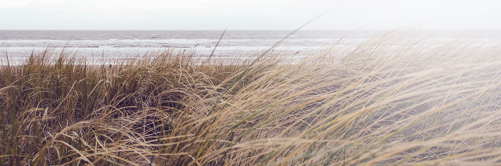 Dunes, coastal, marblehead, home care, home health, Local home care, housekeeping, maids, house cleaning, Care by the Coast, Marblehead