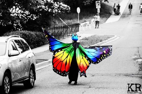 butterfly-tm.jpg