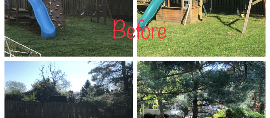 Playset / Swingset Removal !