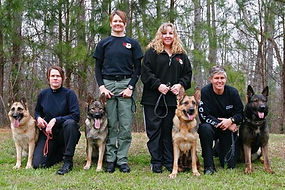 Superior K9, superior, german shepherds, shepherd, malinois, narcotic, police, best, top, k9, breeders, obedience, training, dog, gsd, georgia, ga, detection, K-9, sable, champions, import, personal protection, kennel, sheriff, puppy, puppies