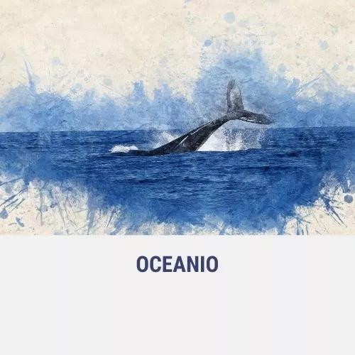Gadzee OCEANIO