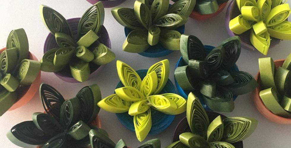 Paper Succulent