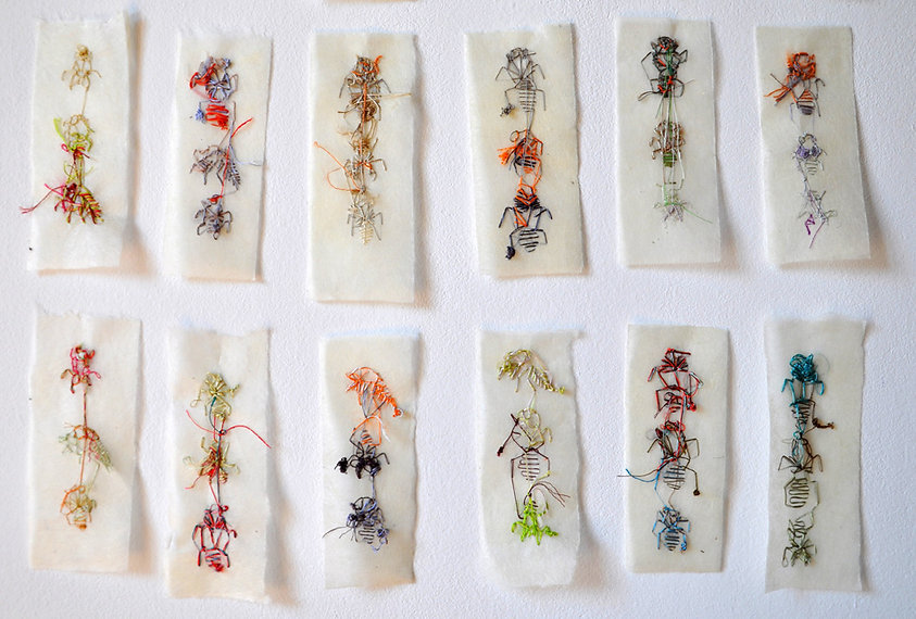 Giulia Berra, EX VOTO, embroideries on silk-paper, unsettled dimensions, 2009-2011-2014, contemporary ar embroideries with a motif of cicada spoils