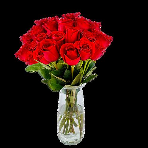 Lleno de rosas