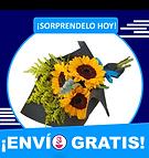 flores en zacatecas envía flores zacatecas