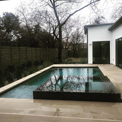 Modern Austin Poolscape