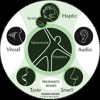 Proximity Senses +V-A.png