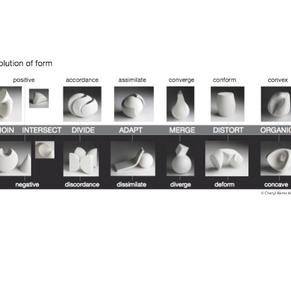 Evolution of Form model