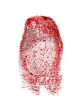 Red fingerprint on white paper.jpg