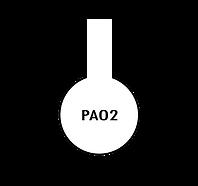 Asset 23.png