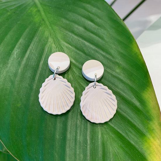 Seashells - Ivory