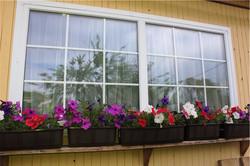 окно пвх с белыми шпросами