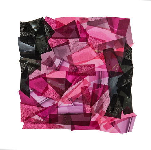 PINK WITH TOUCHES OF BLACK_8x8_2017_Capu