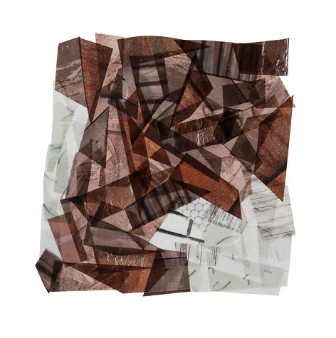 BROWN WITH TOUCHES OF WHITE_8x8_2017_Cap