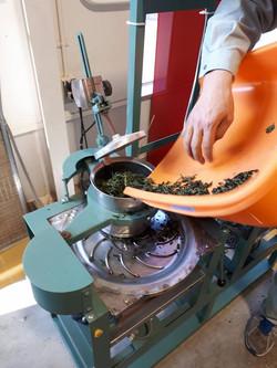 お茶製造1